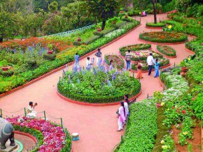 Ooty-Botanical-Gardens-Ooty1