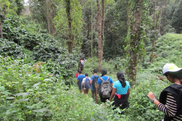 Coorg 4