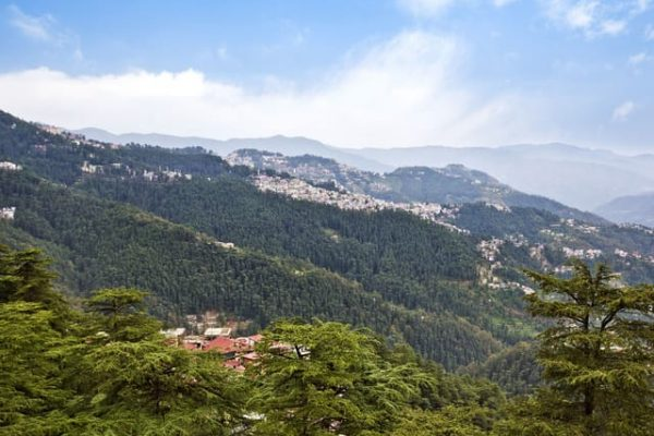 Shimla_103